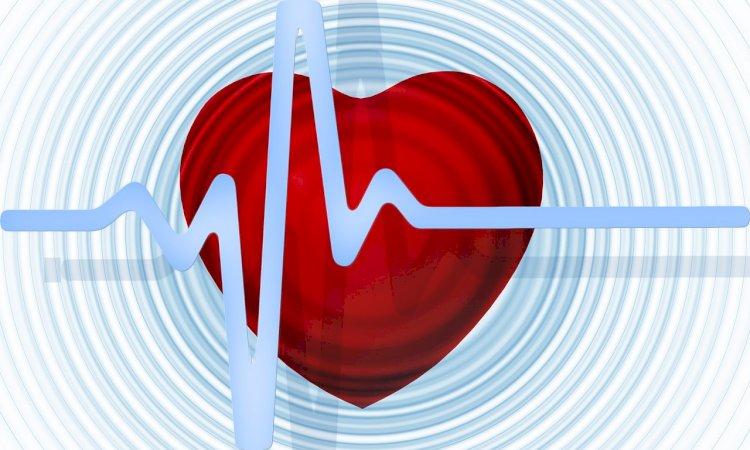 De Ziua Inimii, în 4 orașe din România Caravana informării despre hipertensiunea arterială